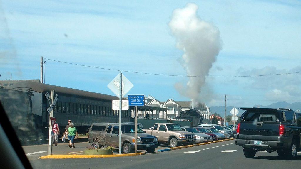 煙がモクモク・・・。蒸気機関車でした。