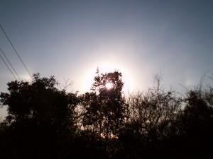 幻日・2012年1月24日8時27分@高知市