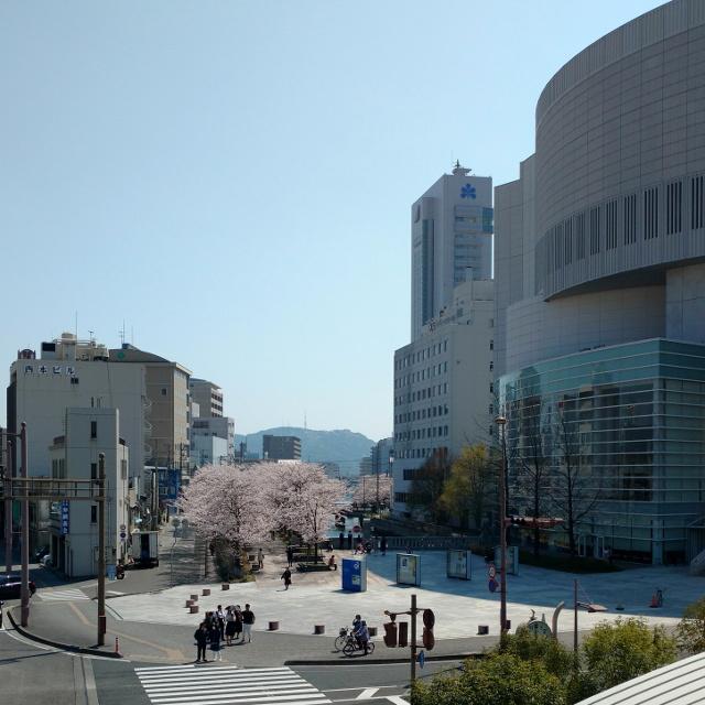 堀川の桜20180326